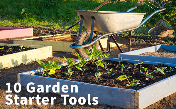 Must-have tools to start gardening